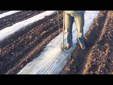 Трактор в поле пашет - YouTube