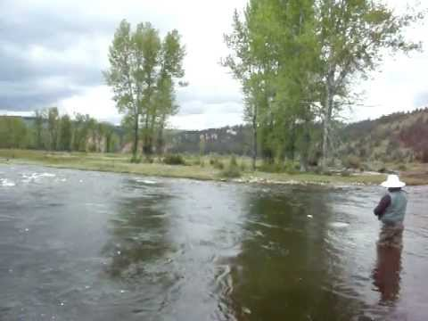 Renegade fly fishing outfitters missoula montana fly for Rock creek fishing report