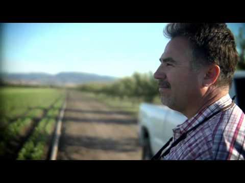 Organic   Food Farming and Health