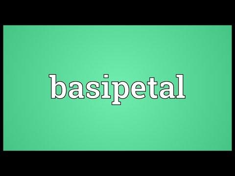 Header of basipetal
