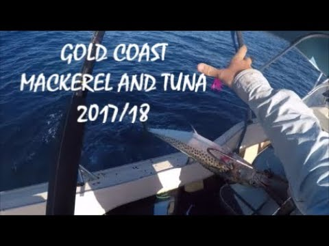 Gold Coast Mackerel And Tuna - Gravel Patch, 2017/2018