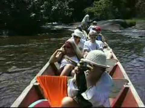 Suriname Where Culture Meets Nature