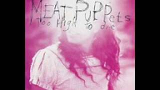 meat puppets never to be found lyrics