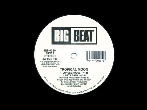 Tropical Moon - Jungle House