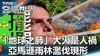 「地球之肺」大火是人禍 亞馬遜雨林濫伐現形 - 李四端的雲端世界