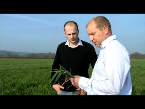 Crop Doctor: Petersfield, Hampshire