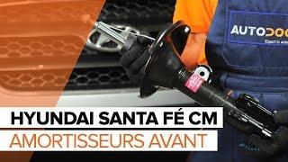 Manuel d'atelier HYUNDAI SANTA FÉ IV Kasten/SUV (TM) télécharger