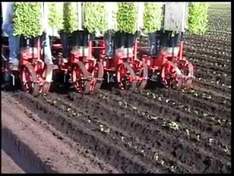 Mechanical Transplanter Company 4 ROW 5000WD