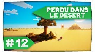 Minecraft ► Perdu dans le Désert • Episode 12: Une nuit d'enfer !