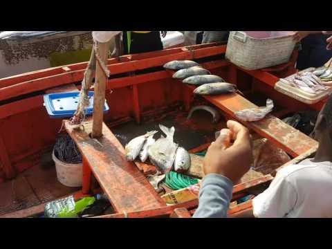 Angolan Fish Market - Salsa/Kizomba fest