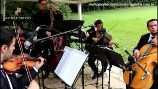 Baixar Wake Me Up | Monte Cristo Coral e Orquestra Para Casamentos
