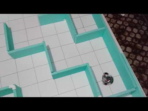 Snake Maze Test 200