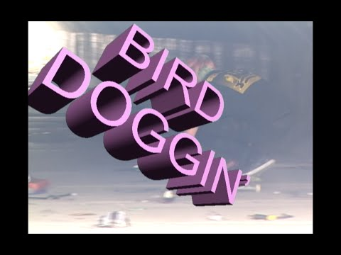 BIRD DOGGIN full video