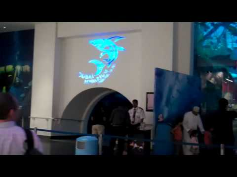 Attractions inside Dubai Mall