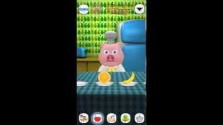 Talking Pig Oinky - My Funny Virtual Piggy Pet Friend Games for Toddlers and Kids FREE