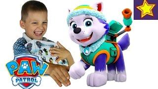 Игрушки для детей. Щенячий патруль распаковка Райдер и Эверест Toys for children