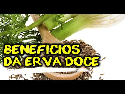 CONHEÇA OS BENEFICIOS DO CHÁ DE ERVA DOCE PARA O CORPO  (POR FERNANDO COUTO)