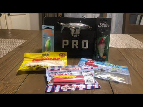 Repeat Mystery Tackle Box Pro Inshore Saltwater January