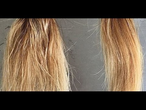 How to Color Damaged Hair | color damaged hair | how to treat color ...