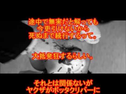 【閲覧注意】ヤクザにまつわる怖い話⑤ヤクザの拷問 マジでエグイ・・・