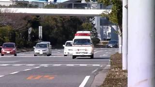 垂水管内で発生した救助事案で緊急走行で病院に戻る神戸市立中央市民病...