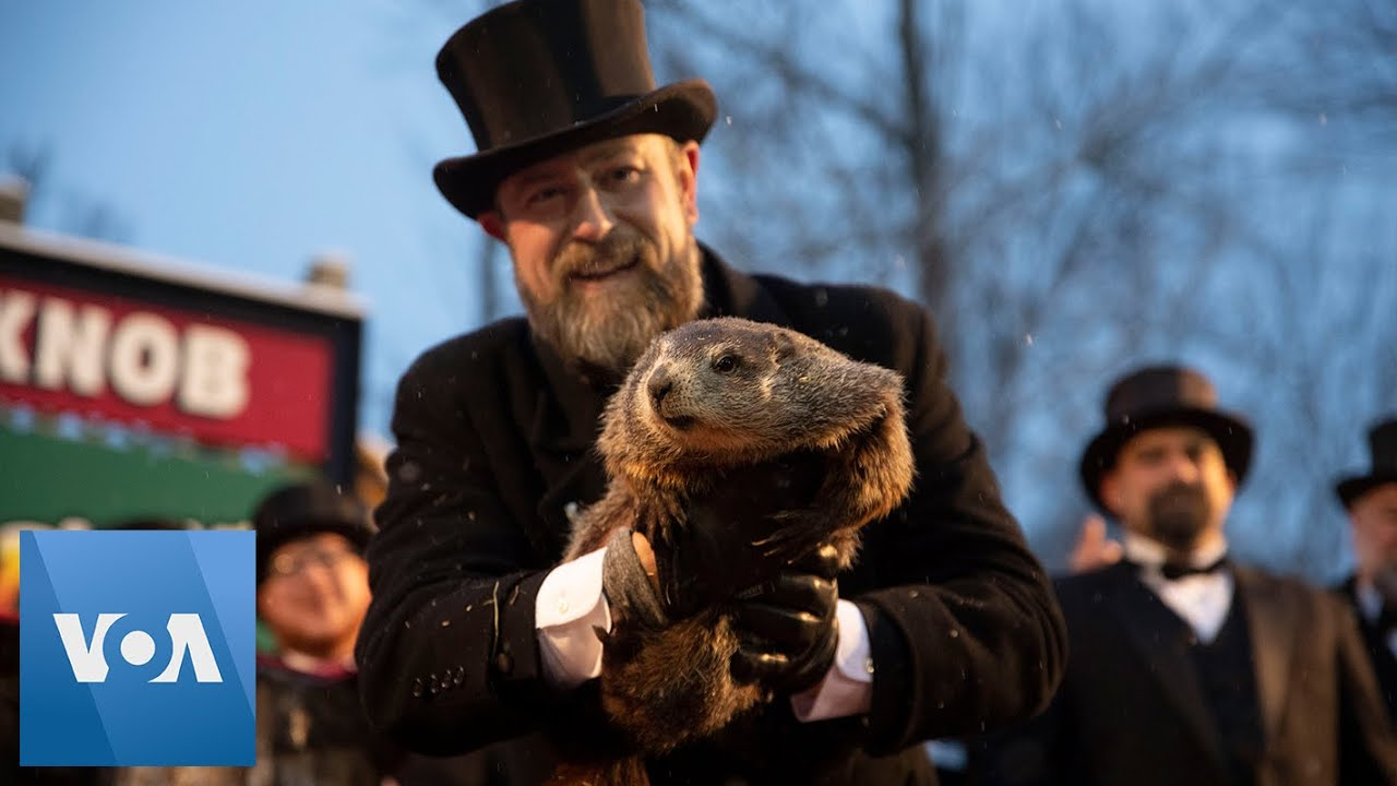 Groundhog Day 2020: Punxsutawney Phil sees no shadow, predicts ...