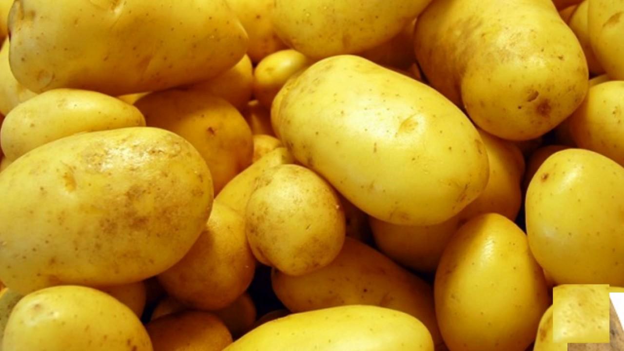 Tác dụng của khoai tây – Khoai tây và những công dụng tuyệt vời cho sức khỏe
