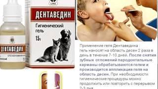 Дентаведин ВЕТЕРИНАРНЫЙ  - для  обработки   полости  рта