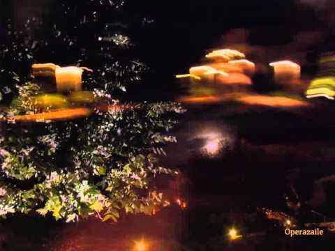 Jessye Norman: 5 Mélodies (Le Colibri ♦ Les Papillons ♦ Le Charme...) by Chausson
