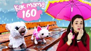 Котенок для Эмили. Куклы Беби Бон видео Как мама для девочек