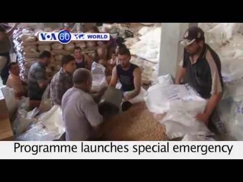 UN's World Food Programme launches emergency food distribution in Gaza. VOA60 World 08-12-14