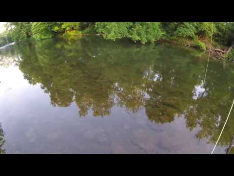 Tulpehocken Creek, Flyfishing July 2016, PART 1,