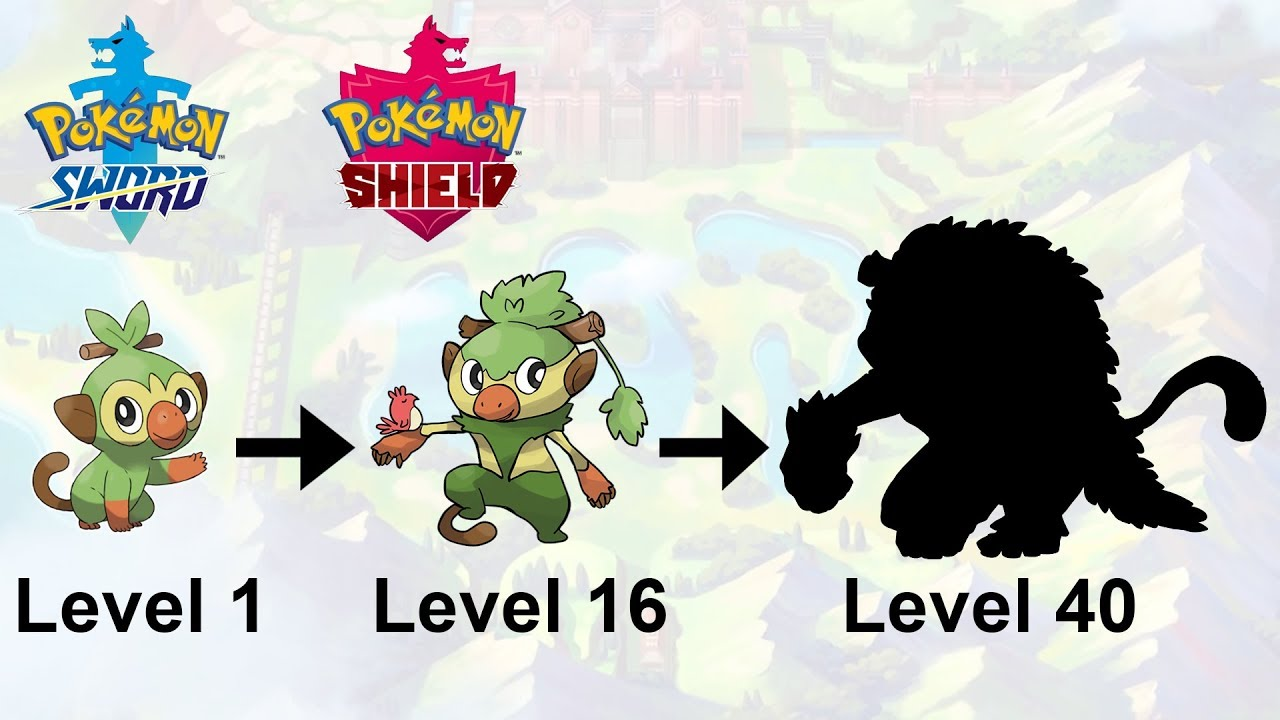 Grookey Evolution Pokemon Sword Shield Starter Fanart Youtube
