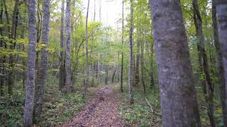 Zeiss Batis 25mm More Wilderness Walking
