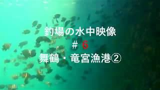 釣場の水中映像#6 舞鶴・竜宮漁港②(アジ・イシダイ等)