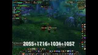 World of Warcraft level 70 hunter PvP video