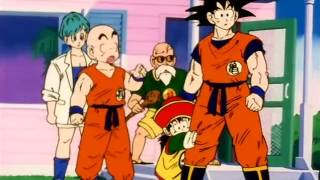 GOKU MEETS HIS ELDER BROTHER 'RADITZ'