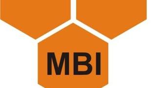 Money Bee Institute Pvt. Ltd Live Stream