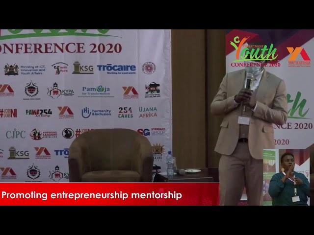 Promoting Peer-Peer Mentorship in Entrepreneurship