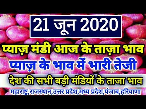 21-जून-2020-प्याज-मंडी-ताजा-भाव,-प्याज-भाव-में-भारी-तेजी,onion-bhav-today-payaj-bhav,-mandi-bhav-tod