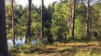 Huvila Juurusveden rannalla Kuopiossa, Oikotie 14957234