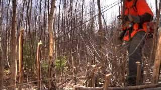 背負式刈払機とナイロンカッターでの草刈動画集 Backpack Brush Cutter