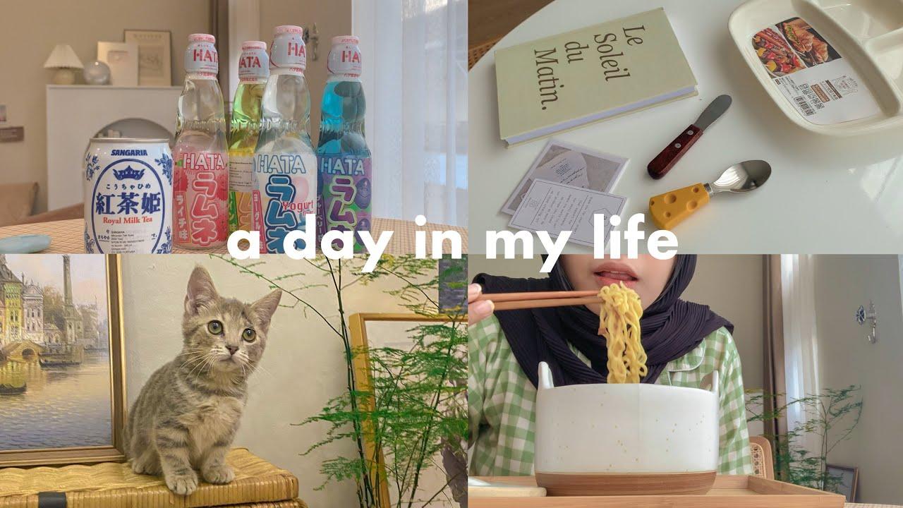 a day in my life 🐈🍜 adopt munchkin cat lucu! review minuman import jepang 🍾