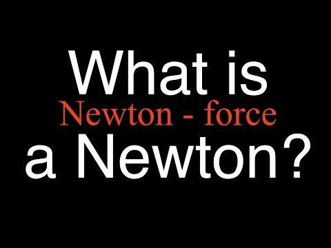 What is a Newton? An Explanation