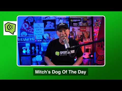 Mitch's Dog of the Day 11/25/20: Free College Basketball Pick CBB Picks, Predictions and Betting Tip