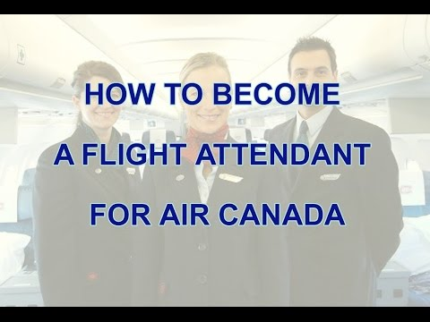 How To Become A Flight Attendant For Air Canada