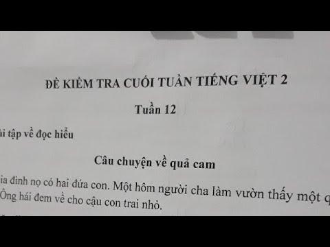 Tiếng Việt Lớp 2- Tuần 12- Đọc Hiểu Bài Câu Chuyện  Quả Cam