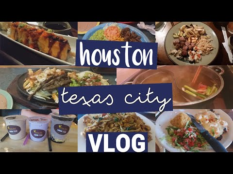 ANNventures Vlog: Htown & Texas City 💥 1st Time at Benihana ▶️ YouTube Creator Day? | MakeupANNimal