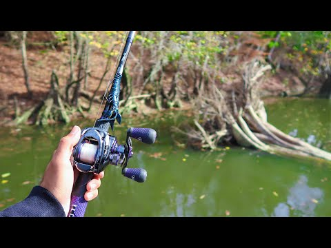 HIDDEN Creek Is LOADED W/ Bass (Fishing For River Monsters Ep.1)