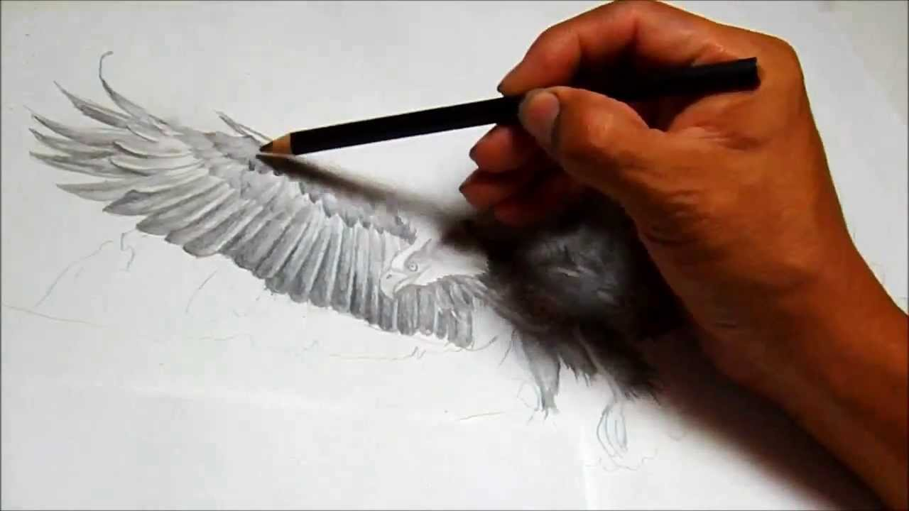 Ruben's Art How To Draw An Eagle Flying
